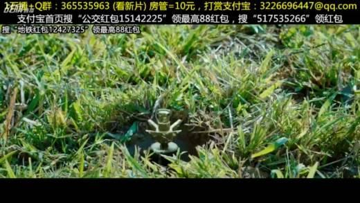 【华语电影】666抽奖+求1石锤