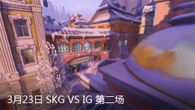 3月23日 SKG VS IG 第二场