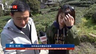 【浙视频】当西湖龙井邂逅杭帮菜